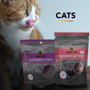 Cat Treat Bundle